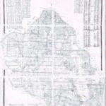 План лесонасаждений Шабановской и Шеновской лесных дач (КРКМ ОФ № 1819)