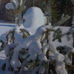 «Зимой у деревни Пуминовской». Фото Петрова П. А. (КРКМ ОФ № 1022)