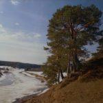 «Река Вель в деревне Папинской». Фото Петрова П. А. (КРКМ ОФ № 1023)