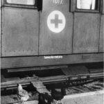 Для разнообразного питания раненых в поезде держали кур и петуха